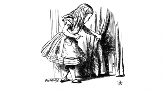 Alice curiosa