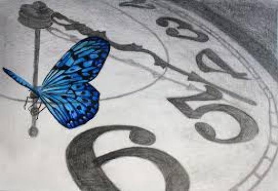 Farfalla e orologio