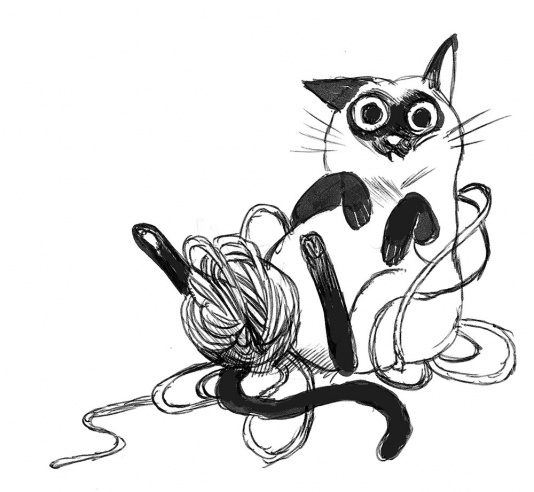 gatto gomitolo